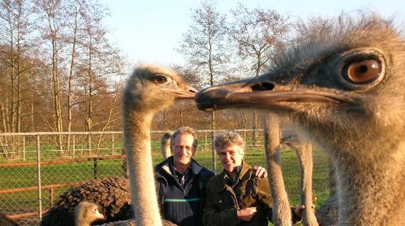Struisvogelhouderij fam. W. de Kreij