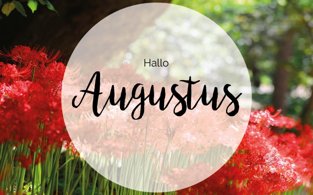 Wat te doen in augustus
