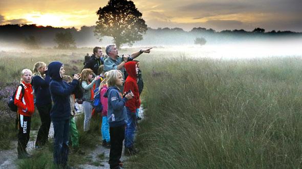 Het Nationale Park De Hoge Veluwe