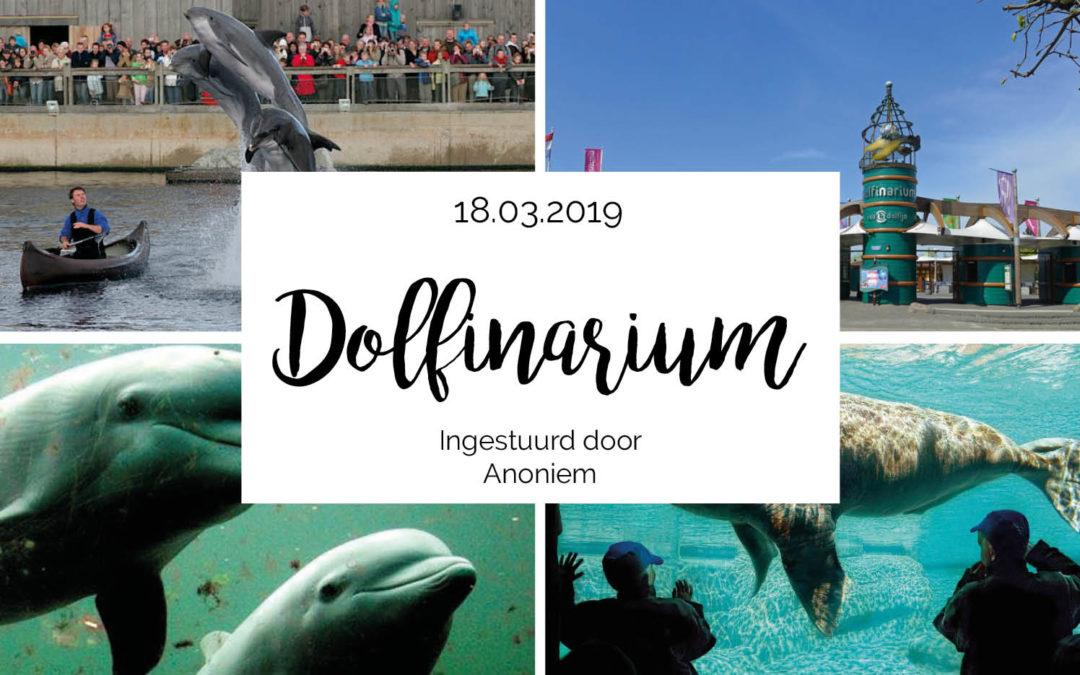 Uitje naar het Dolfinarium met de hele familie!