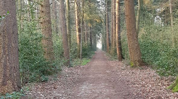 Wandelen in Nederland