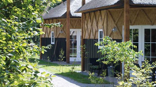 Camping De Norgerberg Norg