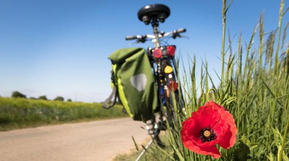 fietsen door medemblik