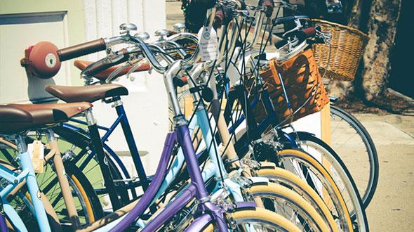 fietsen in en om schitterend haarlem