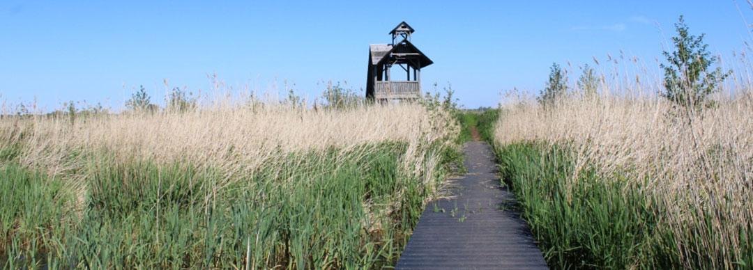 Uitkijktoren Oostpolder