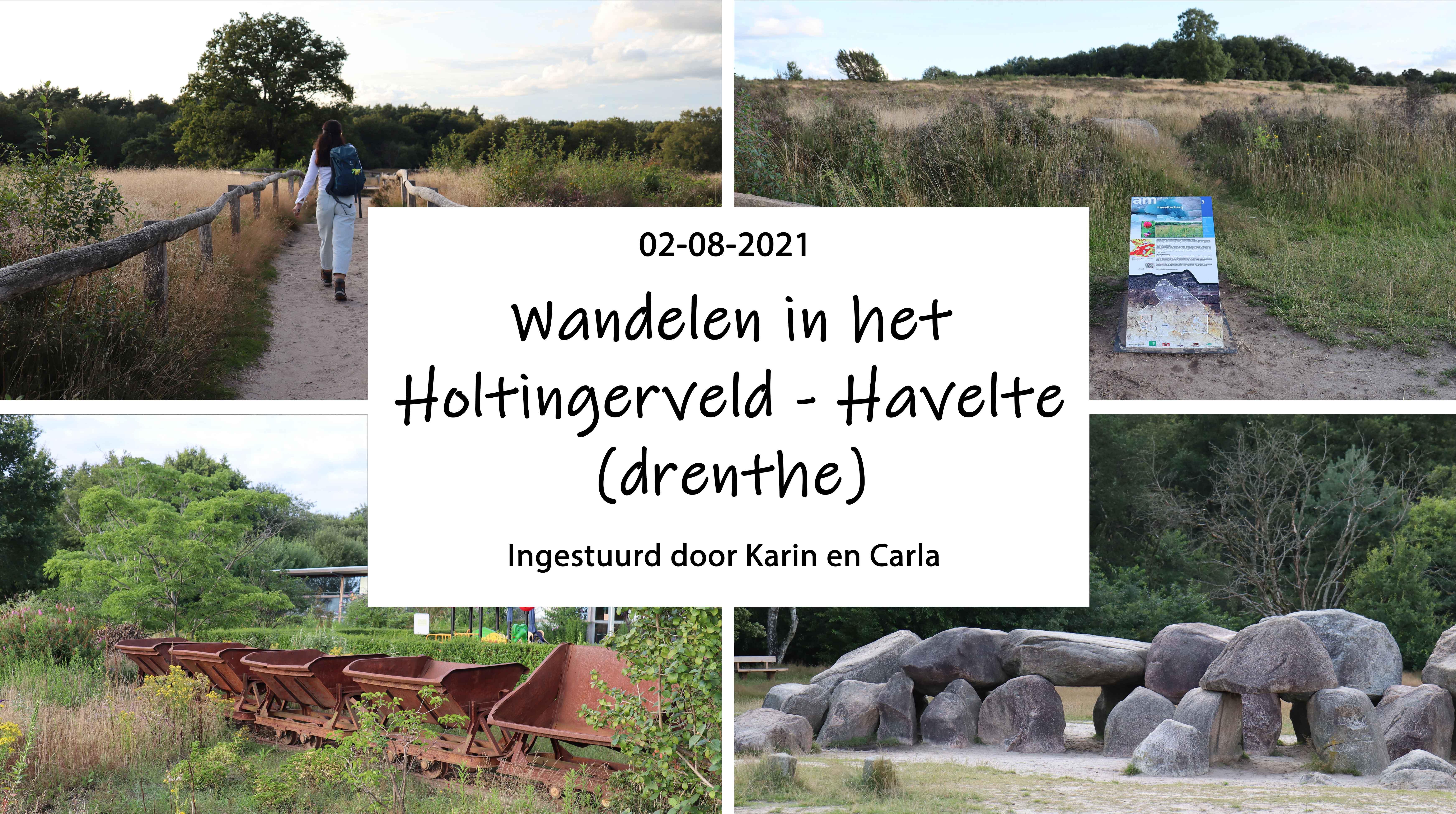 Wandelen in het Holtingerveld - Havelte