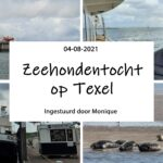 Zeehondentocht op Texel
