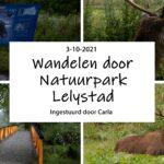 Wandelen door Natuurpark Lelystad